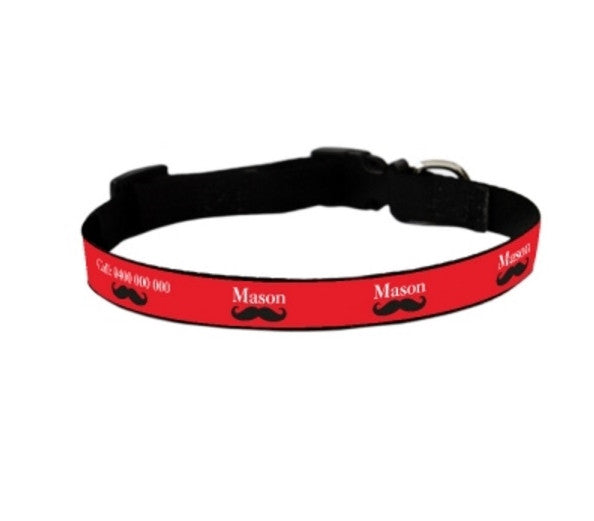 Mister Personalized Pet Collar