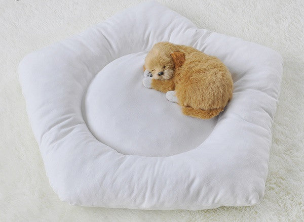 Pentagon Pet Cushions