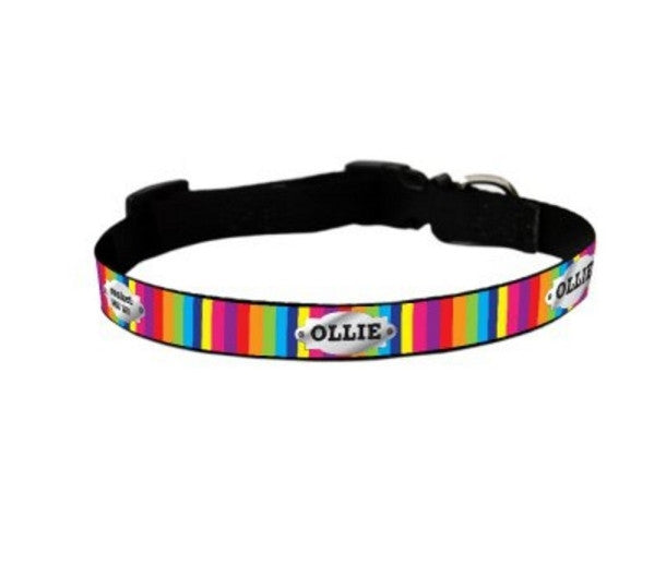 Rayna Personalized Pet Collar