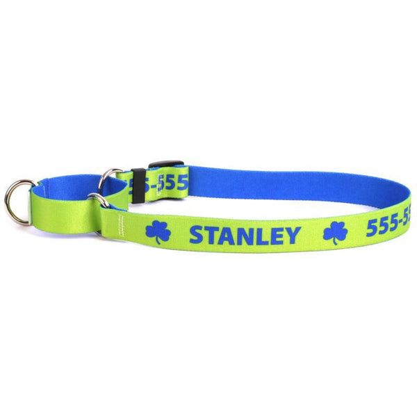 Cody Personalized Dog Collar