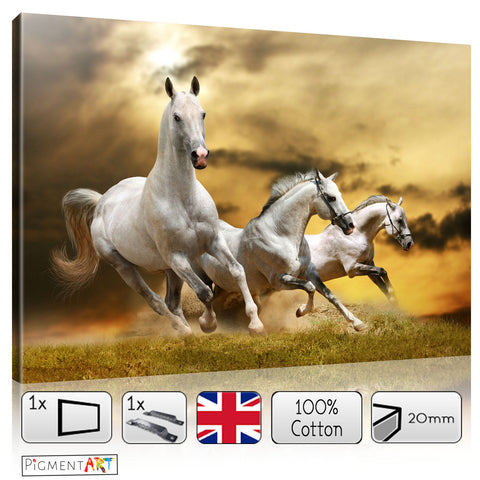 Group of Horses Animal Landscape Canvas - canvas wall art prints uk
