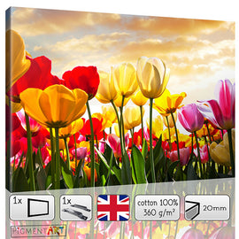 Tulips Colourful Flowers Floral Canvas - canvas wall art prints uk