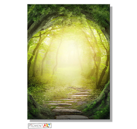 A Path in the Woods - LND0075 - canvas wall art prints uk
