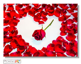 Red Roses Petals Love Heart Canvas - canvas wall art prints uk
