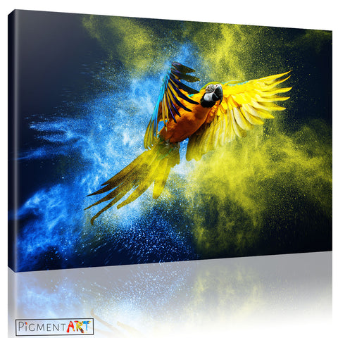 Colourful Parrot Animal Abstract Canvas Art - canvas wall art prints uk