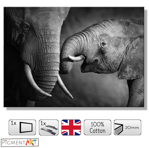 Elephant and Its Baby - BW0009 - canvas wall art prints uk