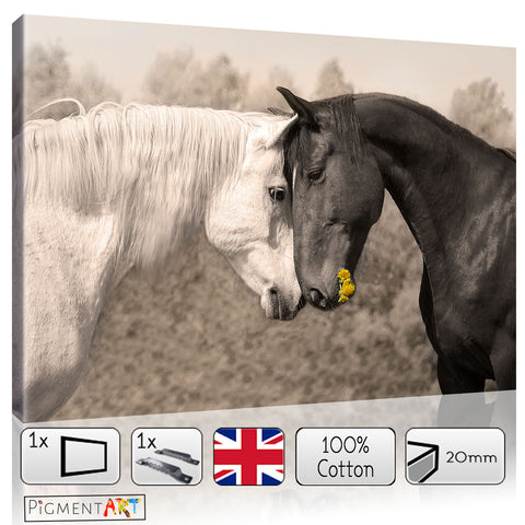 Love Horses On Brown Sepia Canvas - canvas wall art prints uk