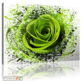 Green Rose Flower Abstract Modern Canvas - canvas wall art prints uk