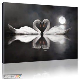 Black & White Love Swans Canvas Art - canvas wall art prints uk