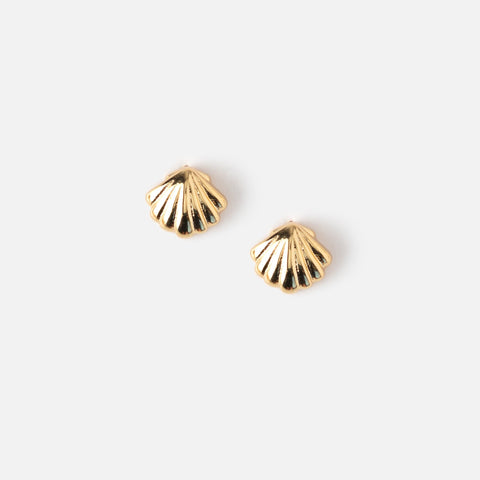 DAINTY SEA SHELL STUD EARRINGS