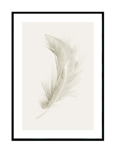 FEATHER - CLOUD GREY