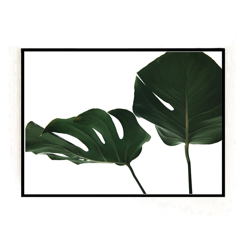 GREEN MONSTERA