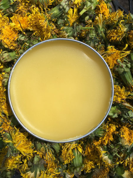Dandelion & Lemongrass Balm Balm - Fisher Soap Company, LLC