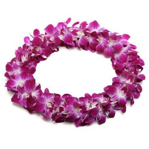Fresh Hawaiian Orchid Leis