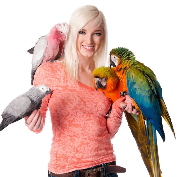 Learn to Free Fly Your Parrot!