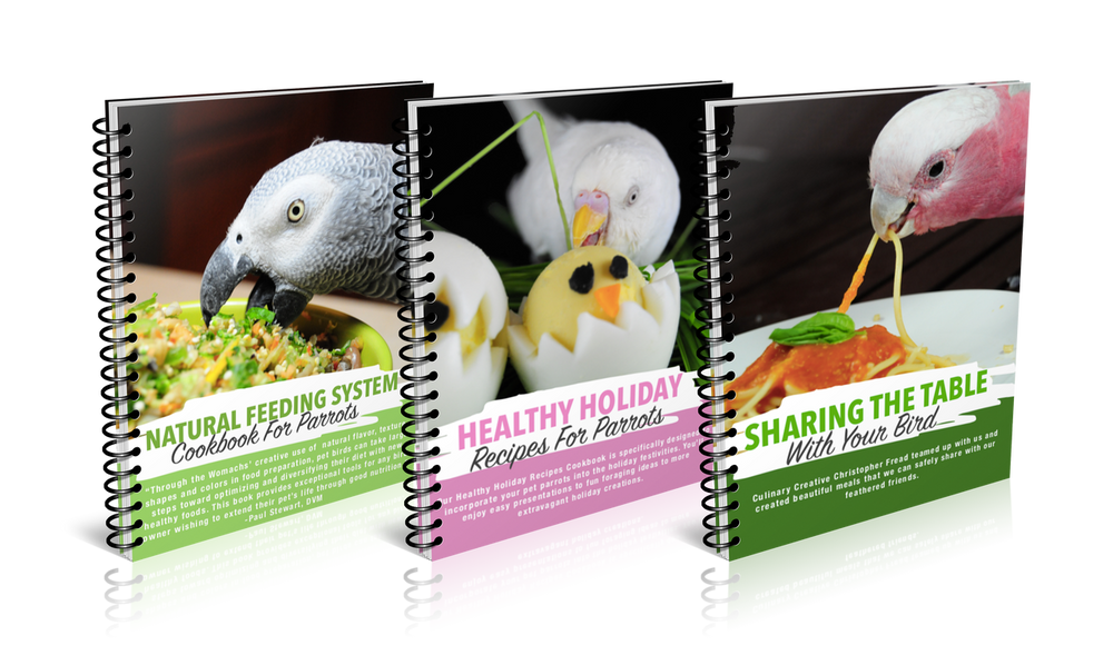 Natural Feeding System Cookbooks in Print