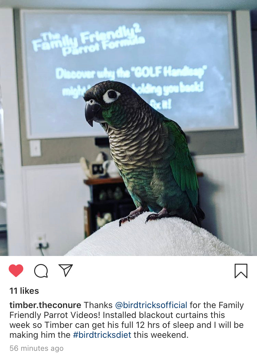 Family Friendly Parrot Formula 2