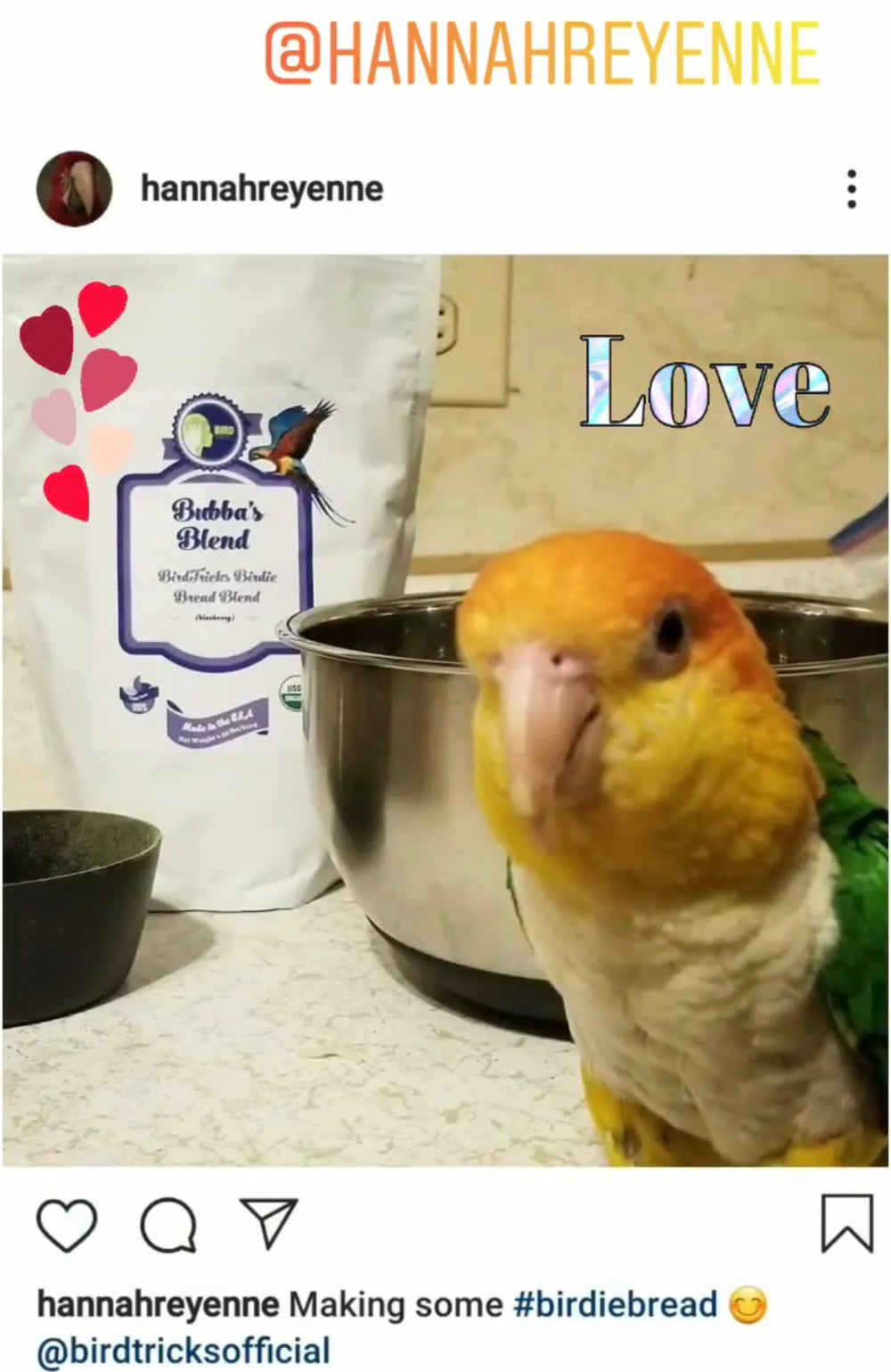 Organic Birdie Bread Mix