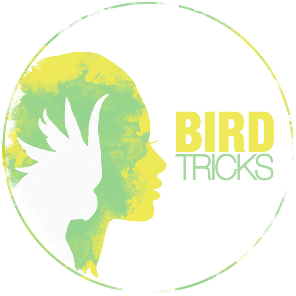 BirdTricks Training Course | Advanced Level
