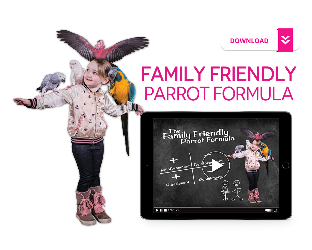 Family Friendly Parrot Formula