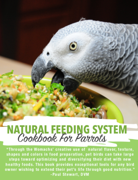 Natural Feeding System (Digital Download) - BirdTricksStore
