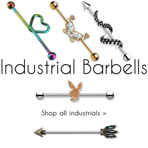Industrial Barbells and scaffolding rings