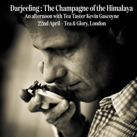 Darjeeling: The Champagne of the Himalaya