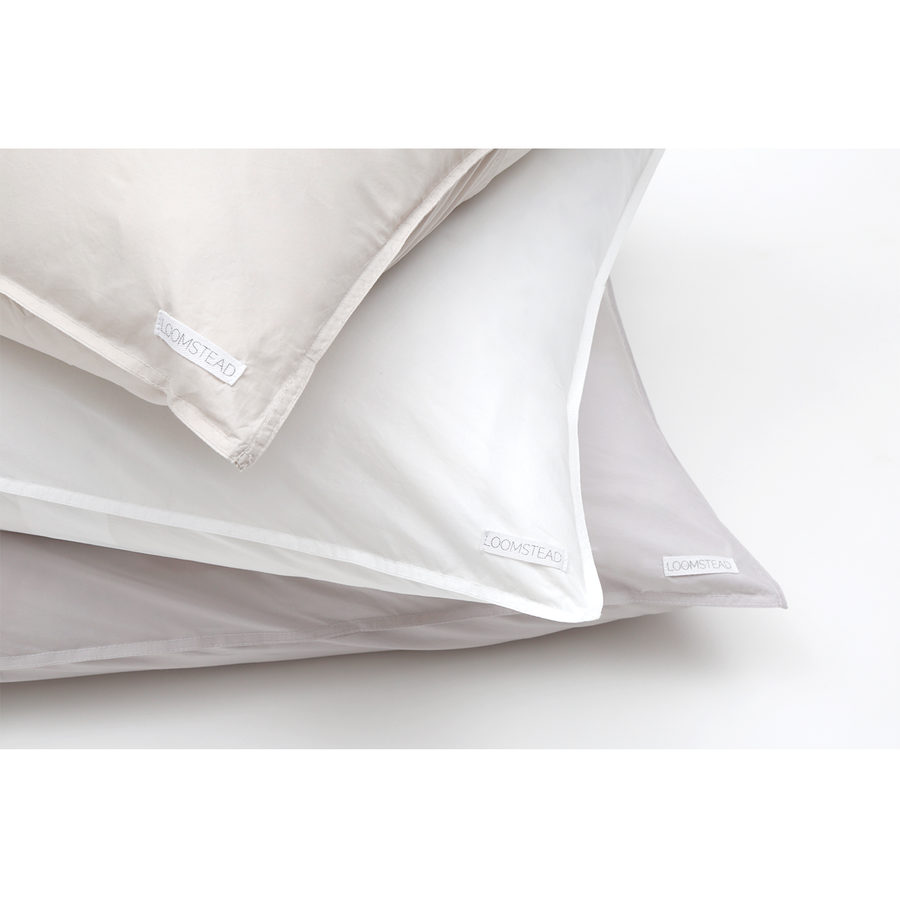 cotton euro sham white