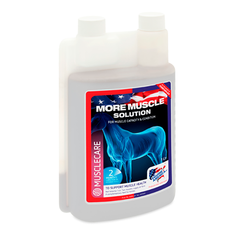 Equine America More Muscle Solution 1 LTR