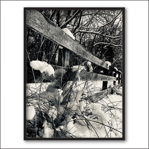 Nature Photography Print + Nature Prints + Nature + Black and White Photography + Winter Photography + Forest Photography + Shenandoah Mountain Photography + Virginia Photography + Farm Photography + Landscape Photography by #timhovdefineart