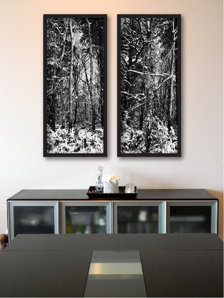 Winter Trees Diptych + Black and White Photograph Trees + Shenandoah Mountains Original Natural Landscape + Hi-Res Photo + Professionally Printed Photograph #timhovdefineart