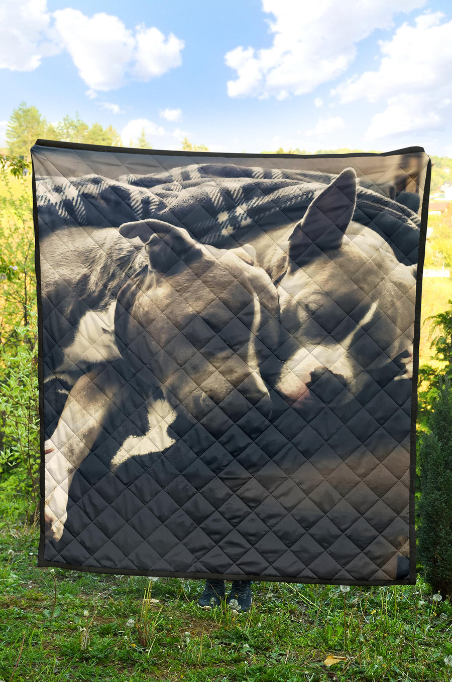 Pitbull Advisory Snuggle Monster Premium Quilt
