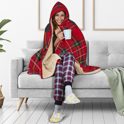 Bernese Mountain Hooded Blanket