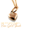 JUNE 2018 ROSE GOLD SHARK