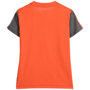 Armani Boys Grey/Orange Logo T-shirt Boys T-shirts Armani Junior [Petit_New_York]
