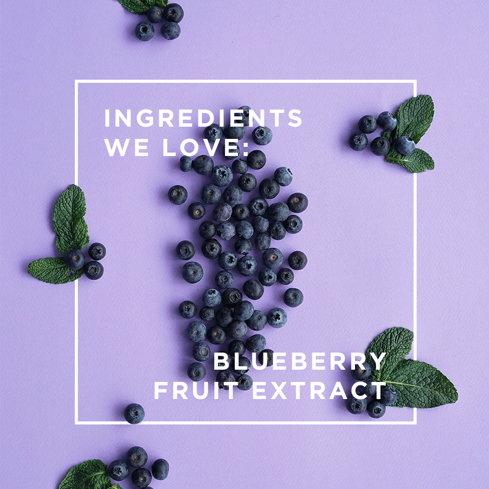 Ingredients We Love: Blueberry Fruit Extract
