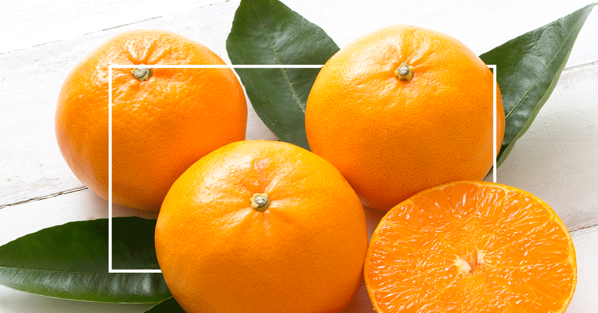 Ingredients We Love: Citrus Nobilis Fruit Extract