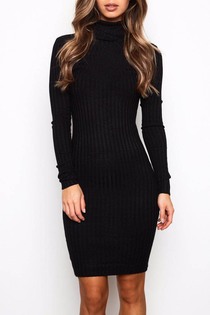 RIBBED KNIT TURTLENECK DRESS