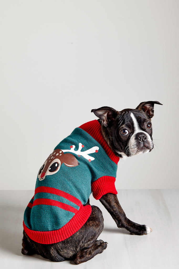 REINDEER GRAPHIC KNIT PET SWEATER - HOLIDAY