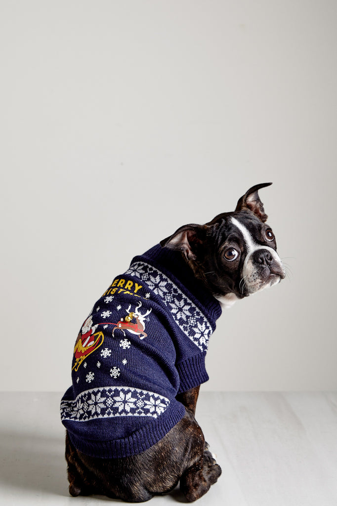 CHRISTMAS PRINT KNIT PET SWEATER - HOLIDAY
