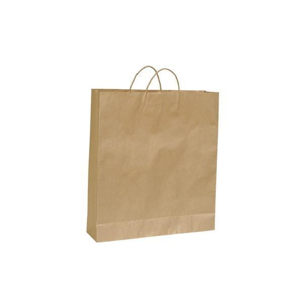 Kraft paper bag medium with handle 340 W x 480 H x 90 mm G A8022