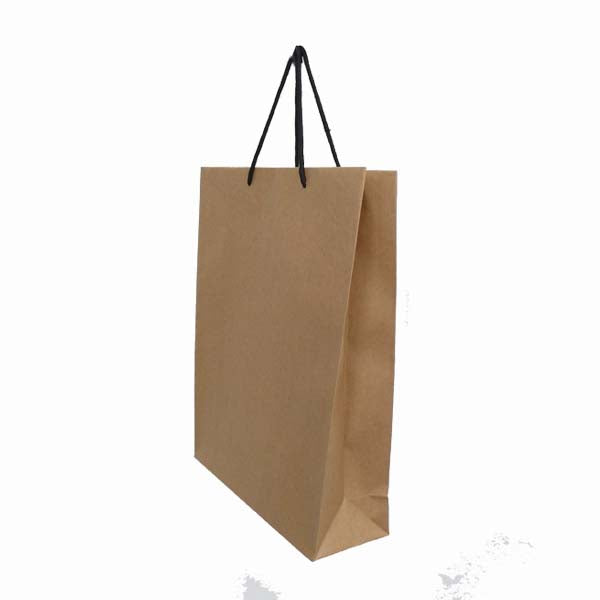Paper Bag with Black Rope Handle Portrait 420X320X110mm Large
