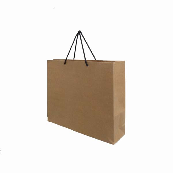 Paper Bag with Black Rope Handle Landscape 260X350X90mm Medium (Pack of 20)
