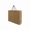 Paper Bag with Black Rope Handle Landscape 260X350X90mm Medium