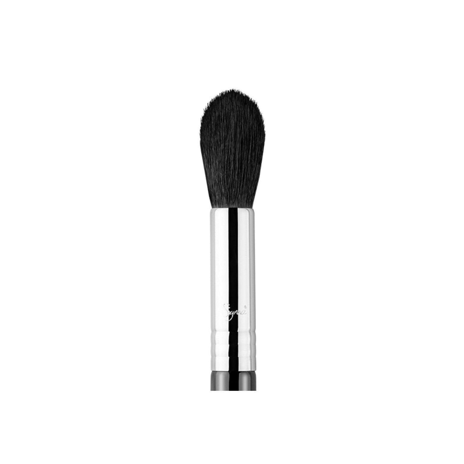 Tools & Brushes - F35 - Tapered Highlighter Brush
