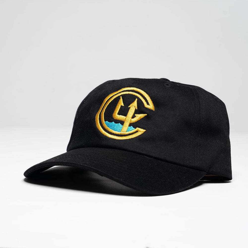 C4 FOUNDATION LOGO DAD HAT // 2 COLORS