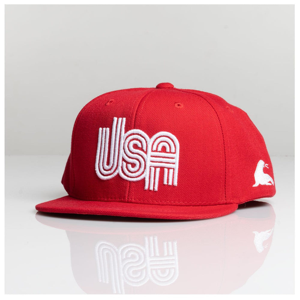 YOUTH RETRO USA SNAPBACK // 2 COLORS