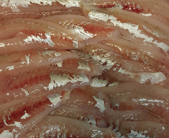 Gurnard Fillets - Skin off bone out (Christmas order)