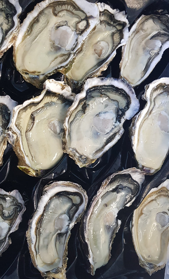 Jumbo Half shell Pacific Oysters (Mother's day)