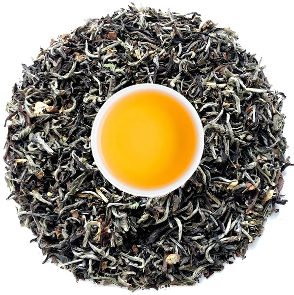 Buy Darjeeling White Tea Online : The Presidential Masala